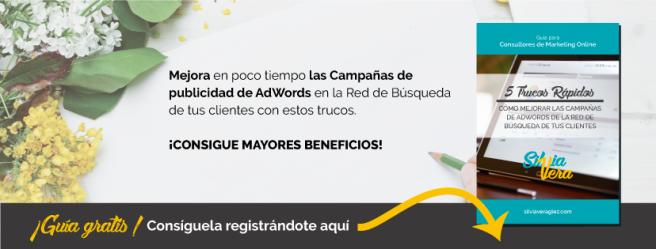 Silvia Vera - Consultora de Marketing Online